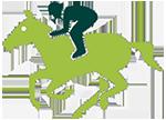 אייקון רוכב על סוס - ירוק